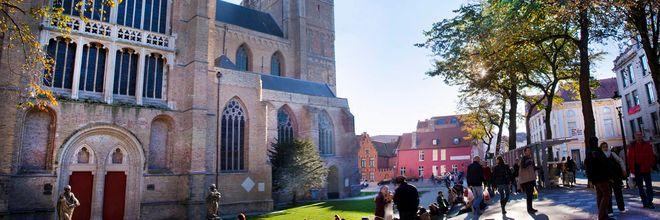 Stichting Steenbreek en vakblad Groen organiseren in september een tweedaagse excursie naar de groene parel Brugge.