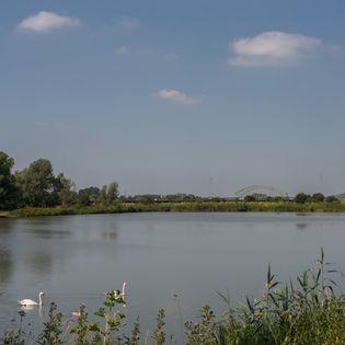 Vier jaar geleden maakte Arnhem een gebiedsvisie, nu zijn de ruimtelijke principes voor het uitwaardenpark Stadsblokken-Meinerswijk klaar. Bouwen maar?