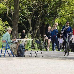 Vondelpark Amsterdam Hittestress