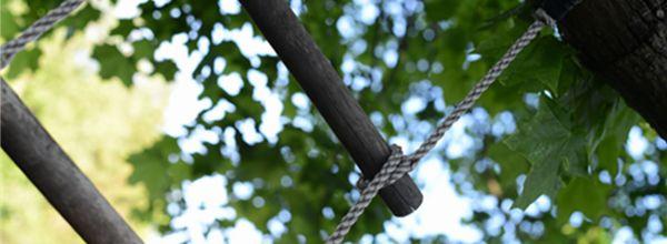 Zaterdag gaat de nieuwe Ladder in. Gisteren organiseerden Stec Groep en Hekkelman Advocaten een gezamenlijke kennisbijeenkomst over de nieuwe Ladder